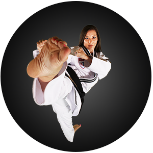 Martial Arts Action Martial Arts Adult Programs